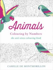 Animals Colouring by Numbers