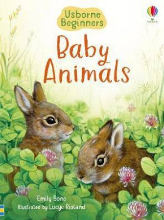 Beginners Baby Animals