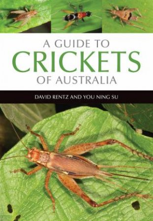 A Guide To Crickets Of Australia by David Rentz & You Ning Su