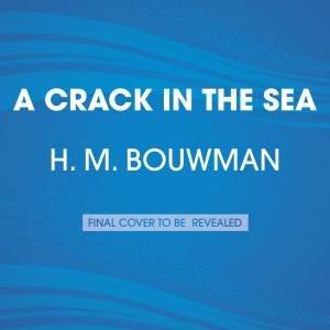 A Crack In The Sea by H. M. Bouwman