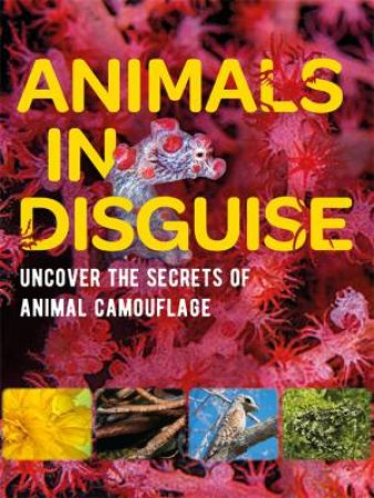Animals In Disguise