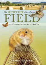 The Secret Life Of An Arable Field Plants Animals And The Ecosystem