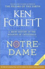 NotreDame A Short History Of The Meaning Of Cathedrals