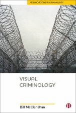Visual Criminology