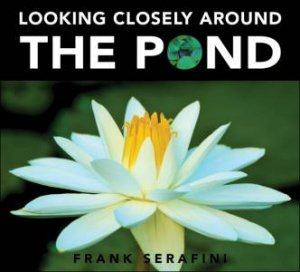 Looking Closely around the Pond by FRANK SERAFINI