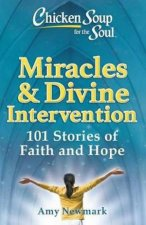 Chicken Soup For The Soul Miracles  Divine Intervention