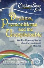 Chicken Soup For The Soul Dreams Premonitions And The Unexplainable