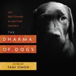 The Dharma Of Dogs by Tami Simon