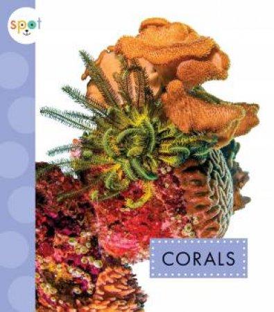 Corals by Mari C Schuh