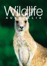 A Little Australian Gift Book Discovering Australian Wildlife