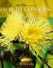 A Steve Parish Souvenir Of Wildflowers