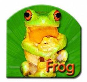 Steve Parish Board Book: Frog