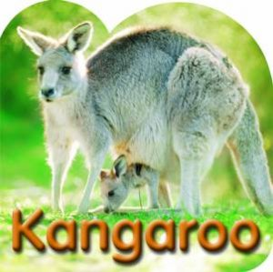 Steve Parish Board Book: Kangaroo
