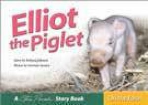 Elliott The Piglet