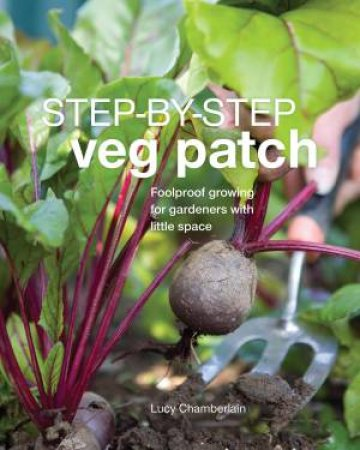 Veg Patch Step By Step by DK