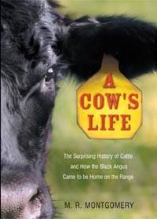A Cow's Life: The Surprising History Of Cattle, And How Black Angus Came To Be Home On The Range by M R Montgomery