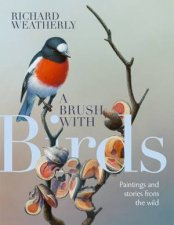 A Brush With Birds