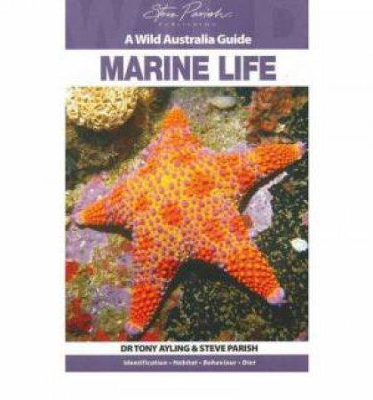 A Wild Australia Guide: Marine Life