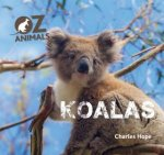 OZ Animals: Koalas by Charles Hope