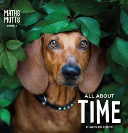 All About Time by Charles Hope