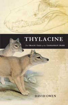 Thylacine by Various