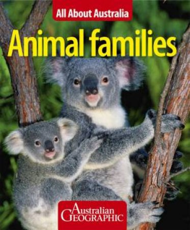 Animal Families All About Australia by None