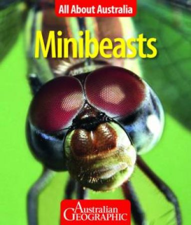 All About Australia: Minibeasts by Australian Geographic