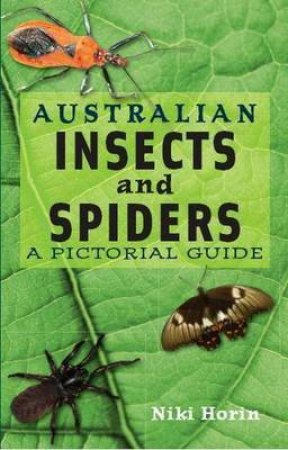 Australian Spiders and Insects by Niki Horin
