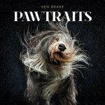 Pawtraits