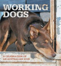 Working Dogs by Rural Press