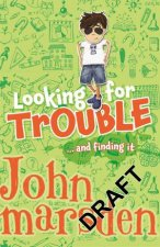 Looking for TroubleAnd Finding it