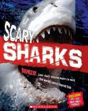 Animal Attack Scary Sharks