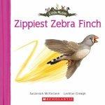 Zippy Zebra Finch