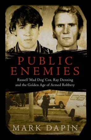 Public Enemies by Mark Dapin