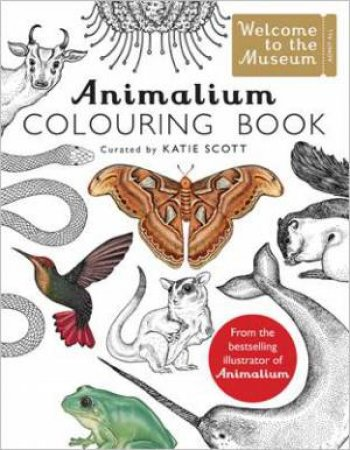 Animalium Colouring Book by Katie Scott