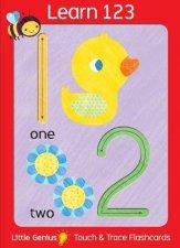 Little Genius Giant Flash Cards 123