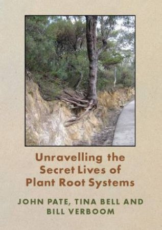 Unravelling The Secret life Of Plant Roots