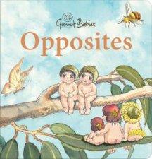 Opposites May Gibbs Gumnut Babies