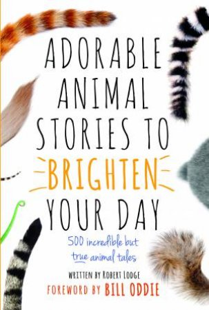 Adorable Animal Stories To Brighten Your: 500 Incredible But True Animal Tales by Robert Lodge
