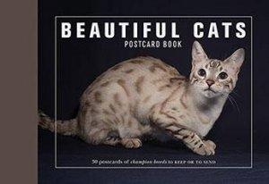 Beautiful Cats Postcard Book