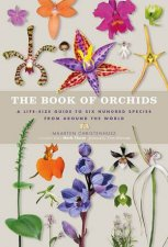 The Book Of Orchids by Maarten Christenhusz & Mark Chase