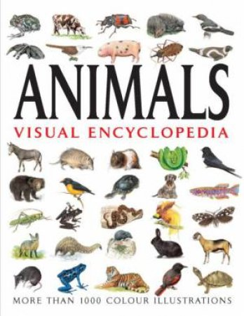 Animals Visual Encyclopedia by Various