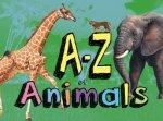 AZ Of Animals
