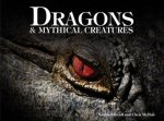 Dragons  Mythical Creatures