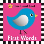 Touch and Feel : First Words by Various