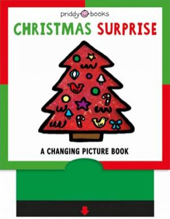 Christmas Surprise by Roger Priddy