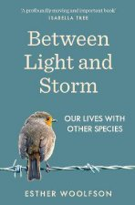 Between Light And Storm