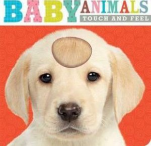 Touch And Feel: Baby Animals by Various