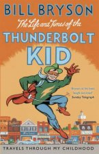 The Life And Times Of The Thunderbolt Kid Travels Through my Childhood