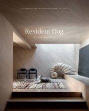 Resident Dog